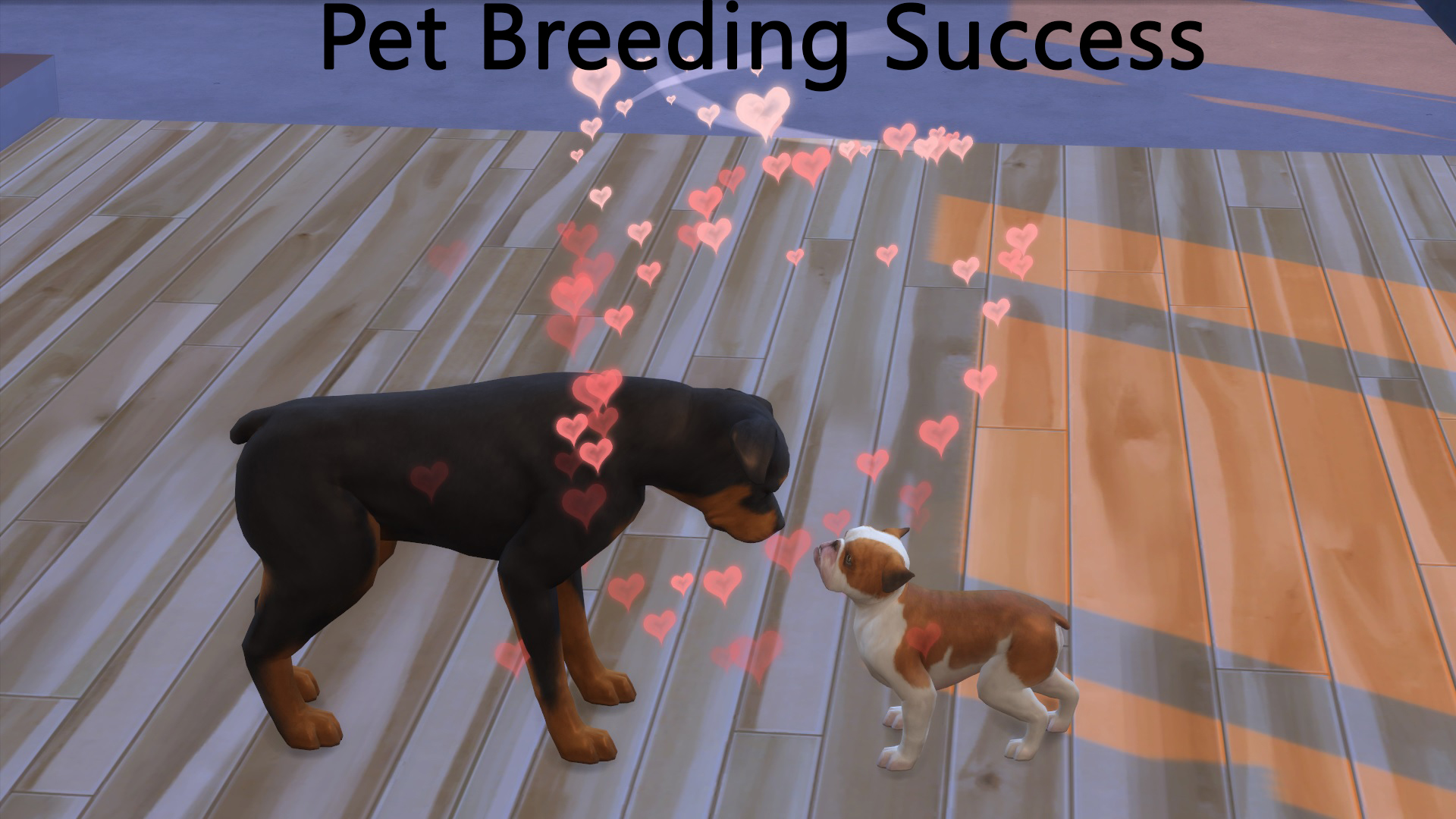 Mod the sims pet pregnancy success for Mods sims 4 muebles