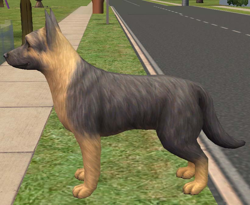 Sims  Cats And Dogs German Shepherd