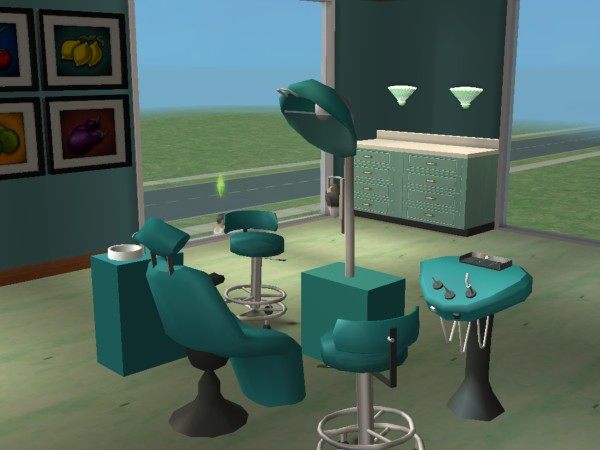 Sims  More Hospital Beds