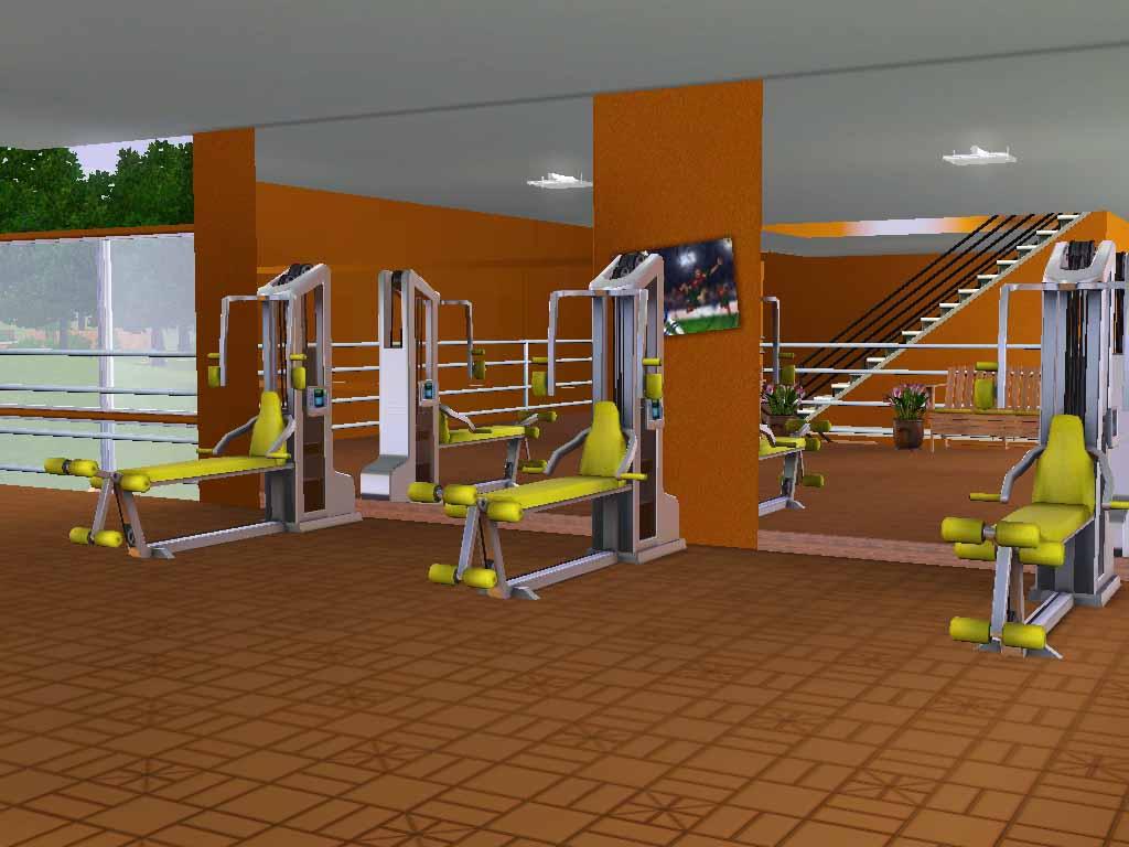 Mod the sims vista alegre gym