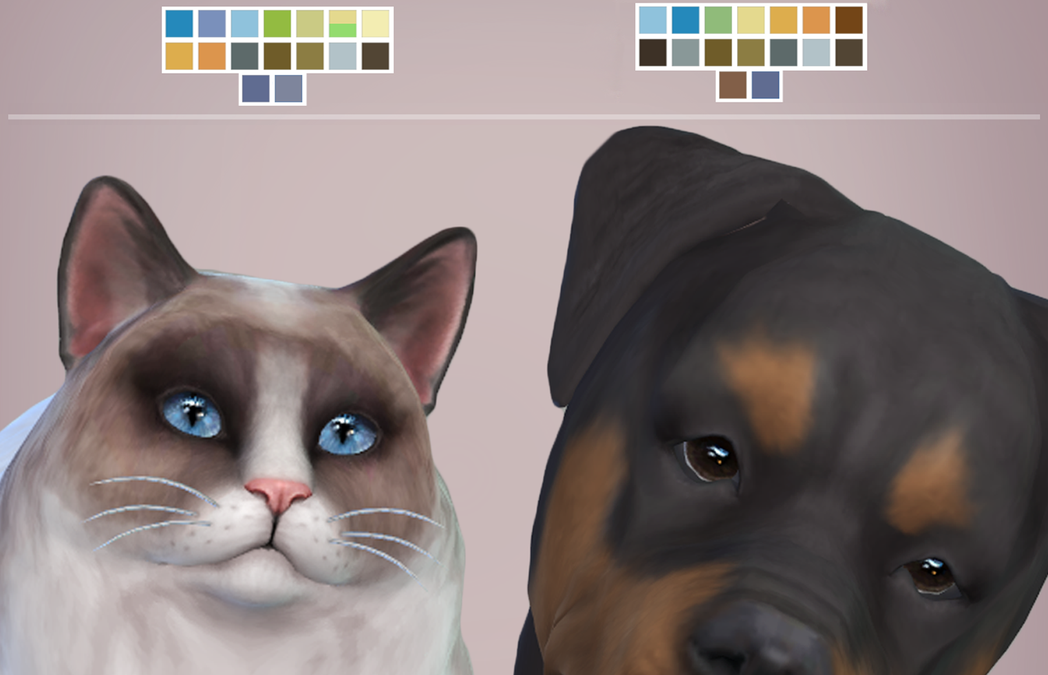 Cats And Dogs Sims  Mod Download
