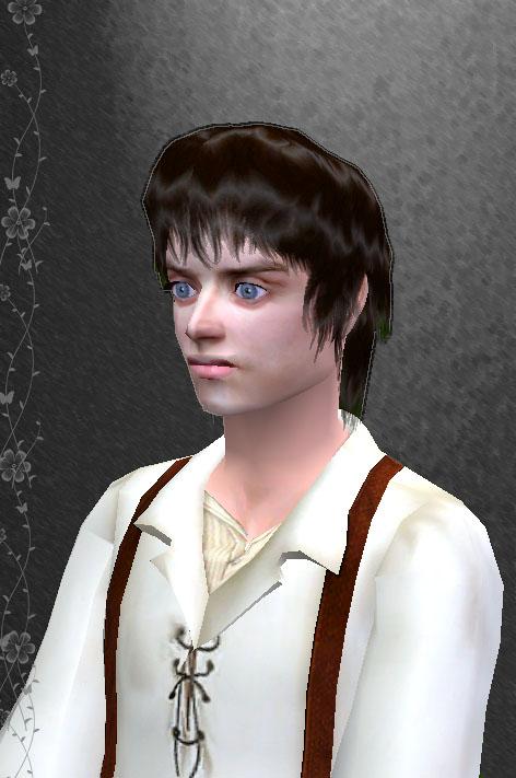 Frodo Actor Height Eli...