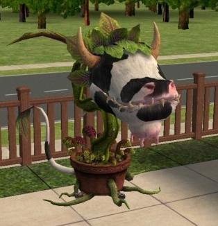MTS_Bonedog-239411-cow-plant.jpg