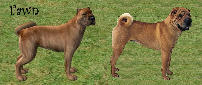 The Sims  Cats And Dogs Sharpei