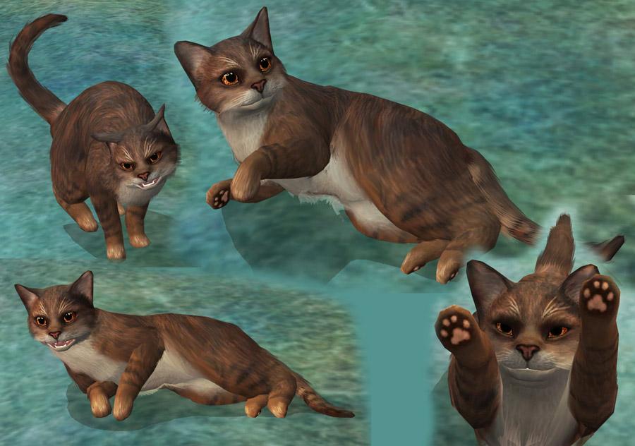 Warrior Cats D Online Game