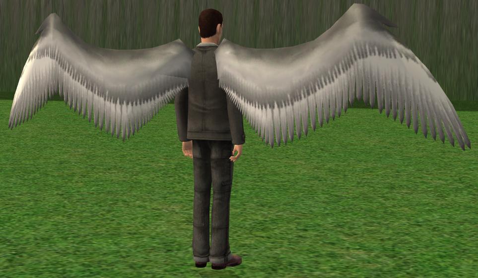 Mod The Sims Bird Angel Like Wings
