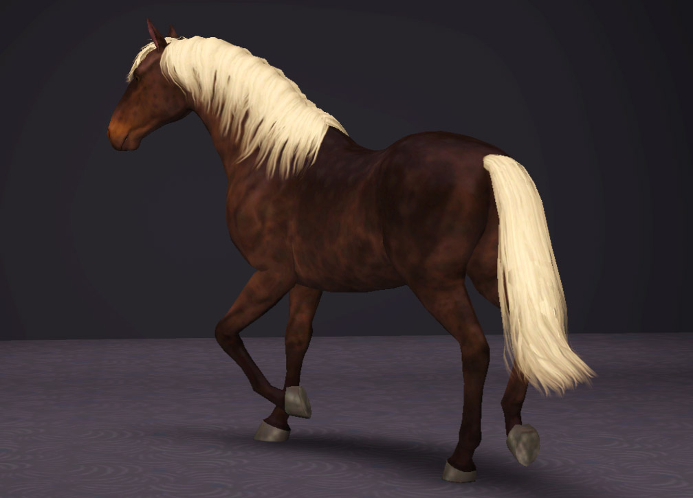 the sims 3 pets how to get a horse