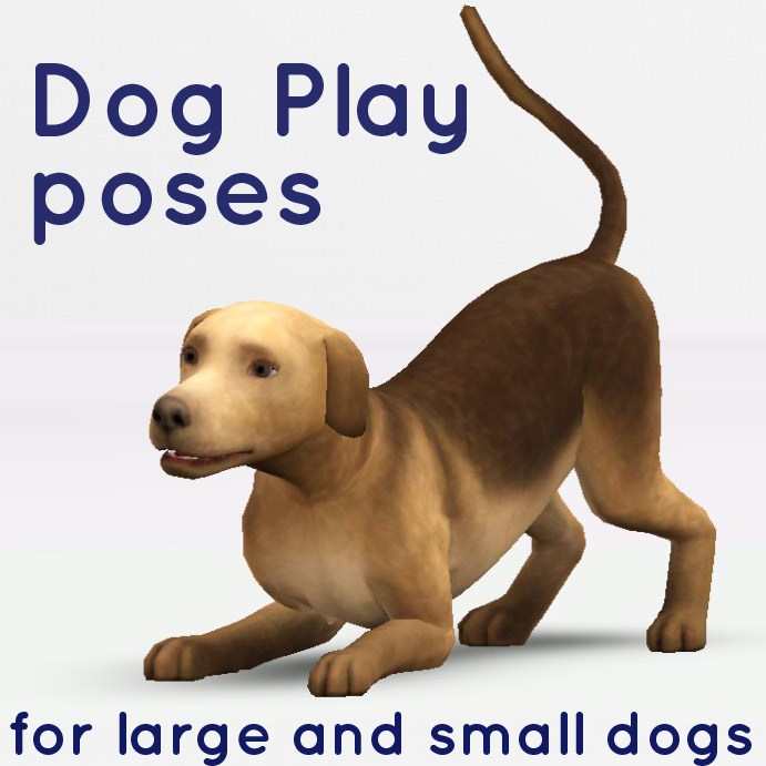 how to find yourmissing pet in the sims 4