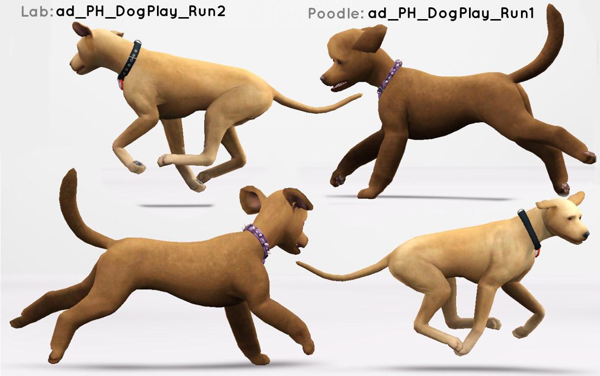 Sims  Dog Breeding Poses