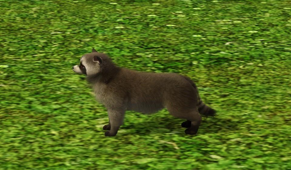 insaniquarium how to get 4 pets