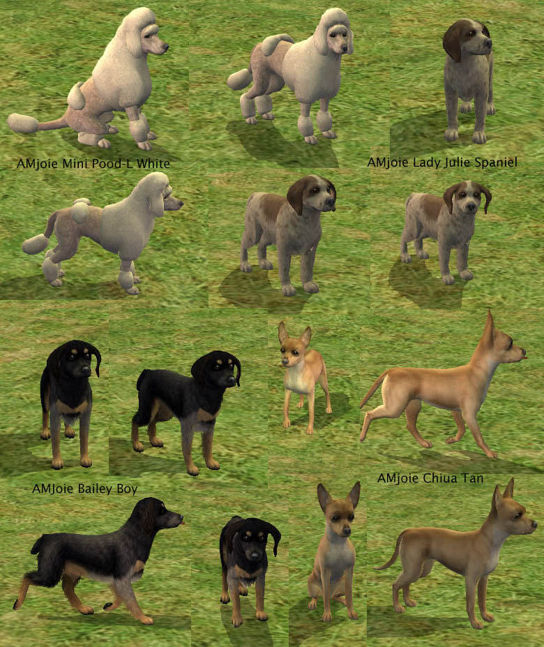 How To Breed Dogs Sims