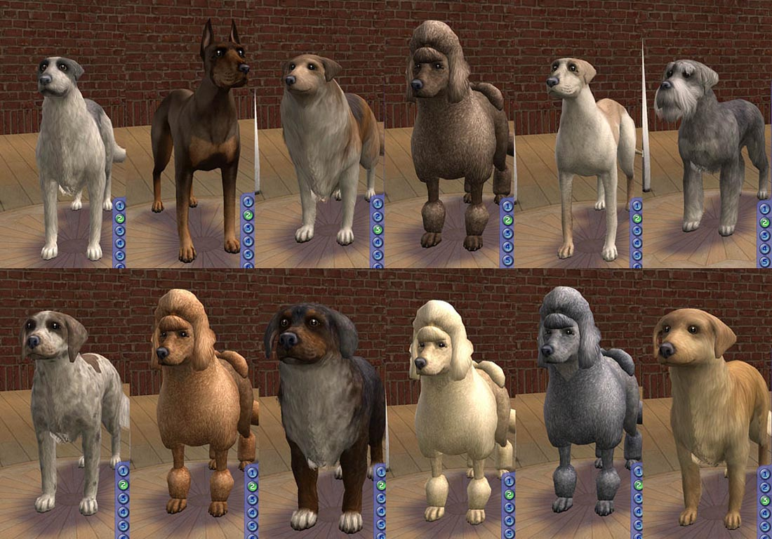 Mod The Sims Amjoie Dog Breeds Part Two Large Dogs Two Dozen