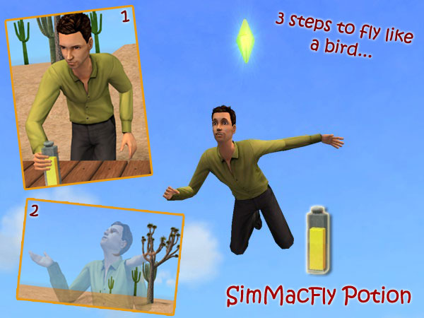 how to make a broom fly for real