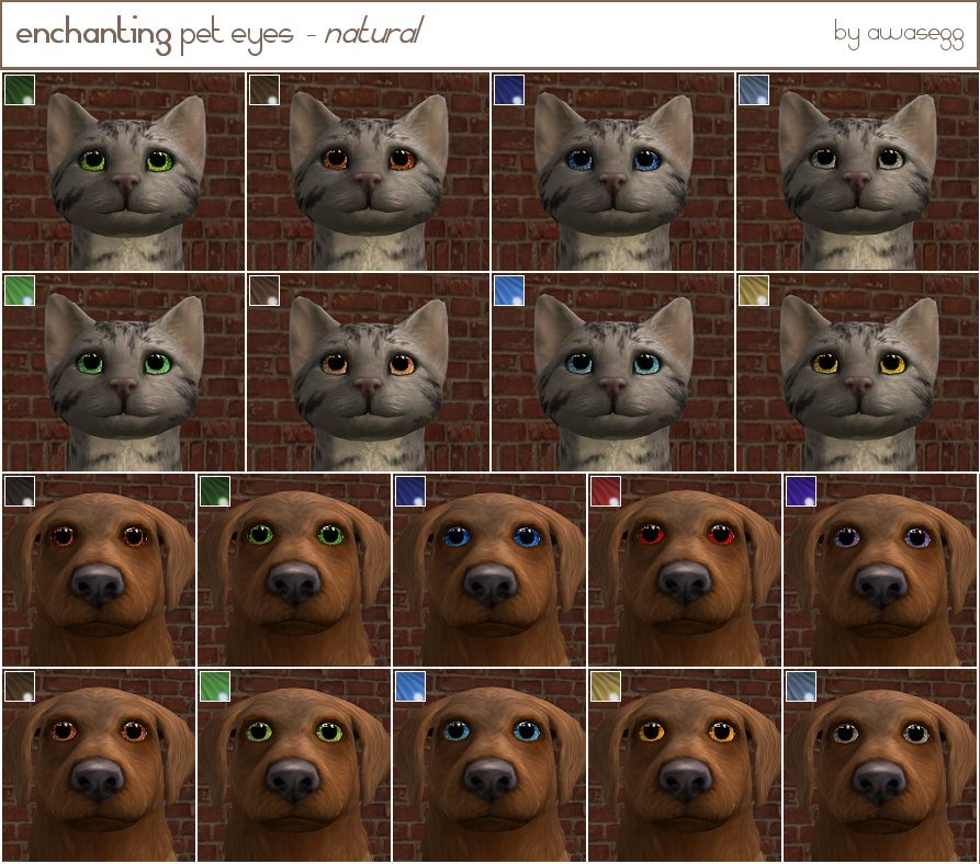 Mod The Sims - the Ultimate Pet eyes (12 sets)