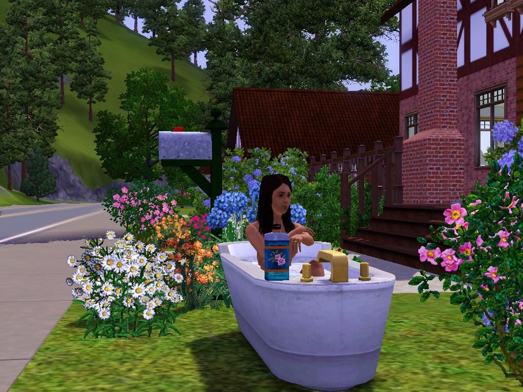 Скачать бесплатно дополнения и моды для игры Sims3 1. Дата выхода