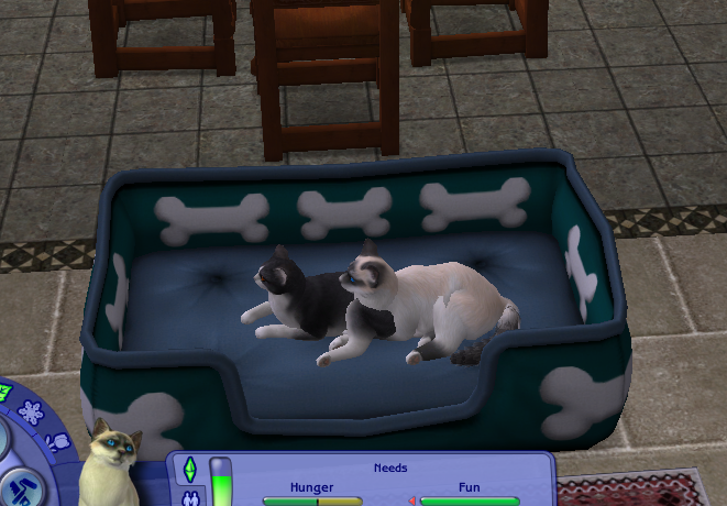 Sims  Cats And Dogs Wolf