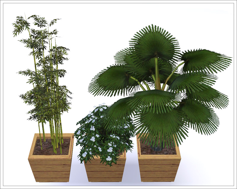 Mod the sims floor plants 1 for Indoor gardening sims 4