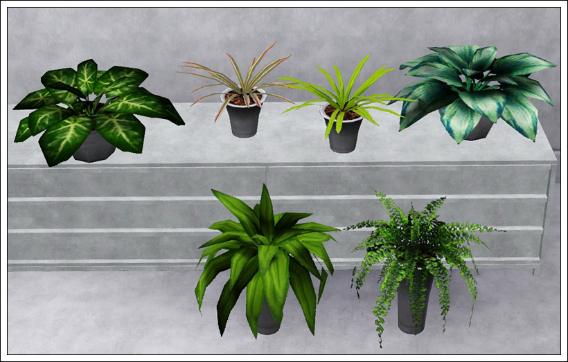 Mod the sims indoor plants 1 updated for wa for Indoor gardening sims 4