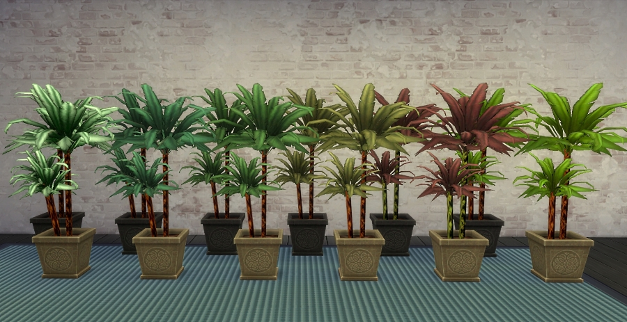 Mod the sims house plant foliage color variations - Colorful indoor plants ...