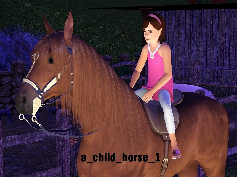 My Horse   for Android - Download