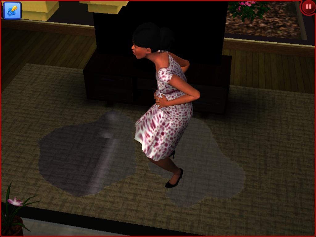 sims 3 pregnancy how to choose gender