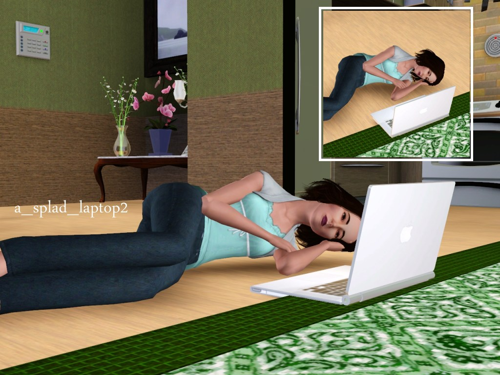 What's the best laptop for Sims 3?