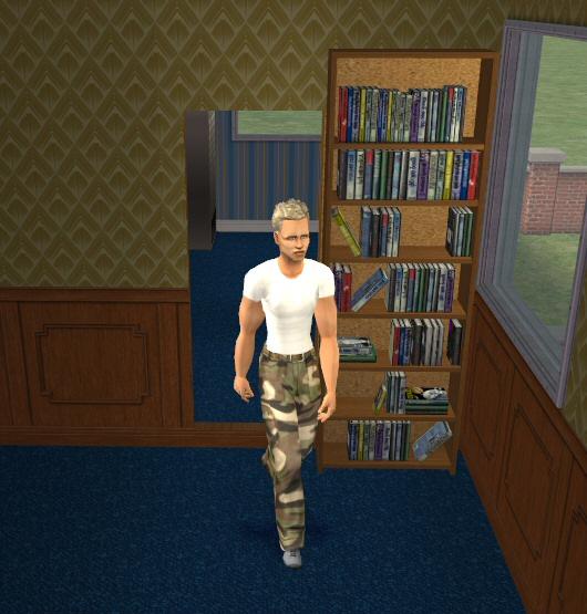 Sliding Doors The Sims 4: Sliding Bookcase