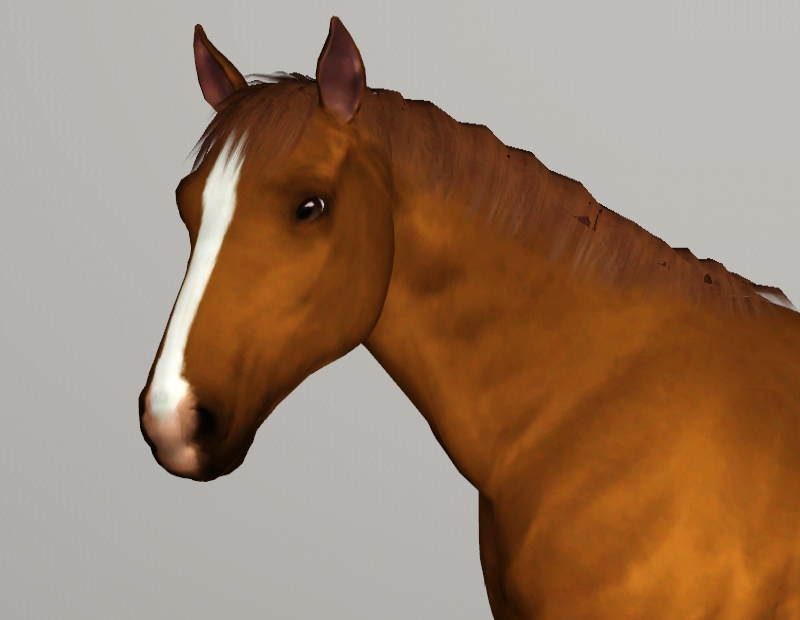 the sims 3 horse coat s