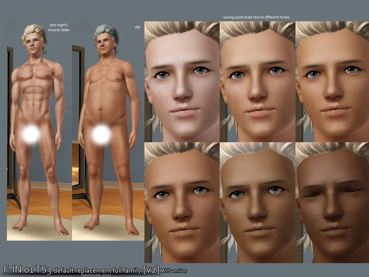 Mod The Sims F In01 Ts3 Default Replacement Full Family V2