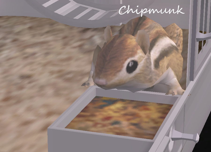 mod the sims updated 01132012 animated lizards and