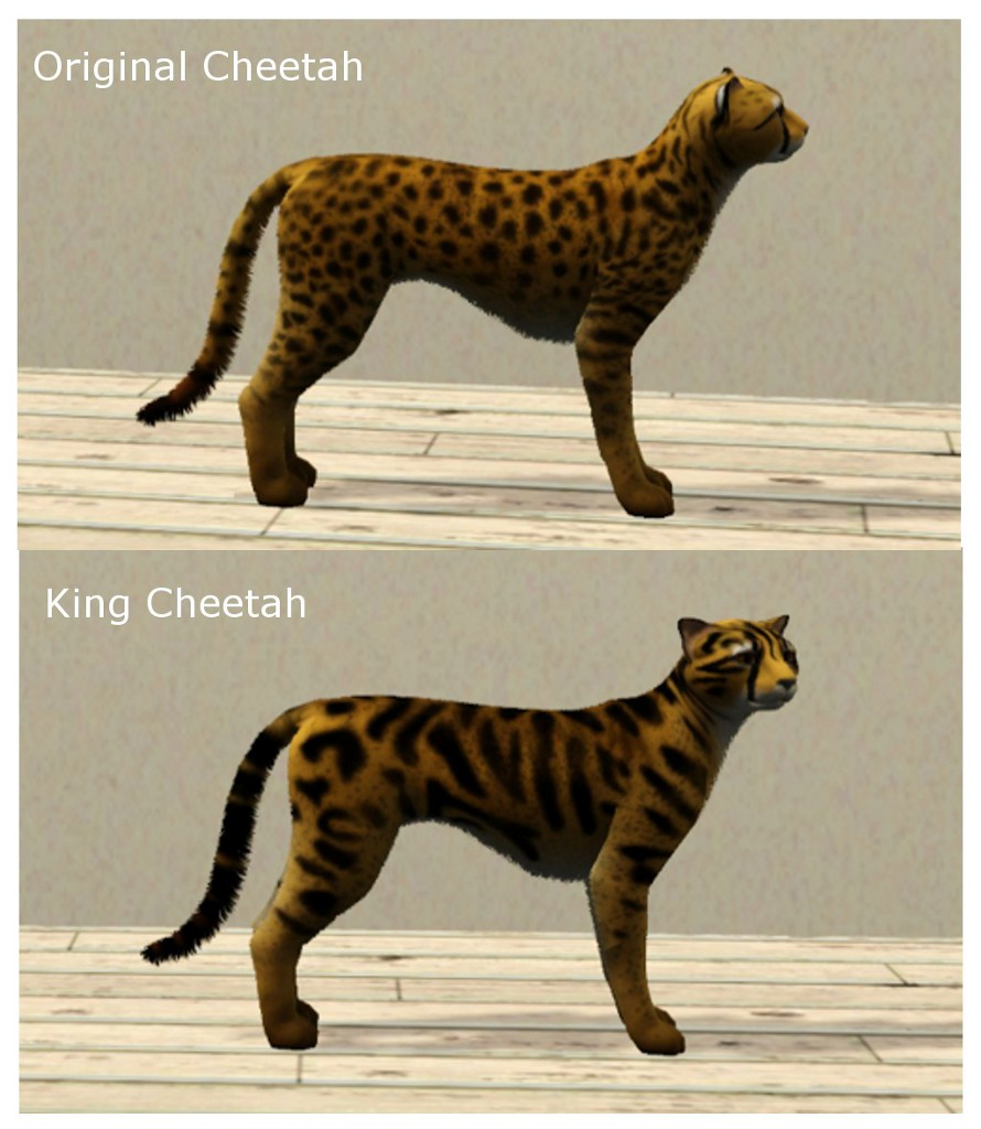 Sims  Big Cat Mod