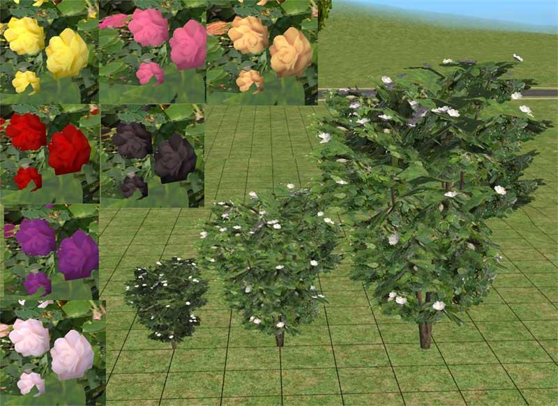 Mod The Sims Hibiscus Tree As Rose Bush
