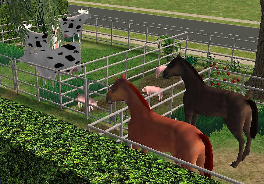 Скачать Моды На Животных Для Симс 3