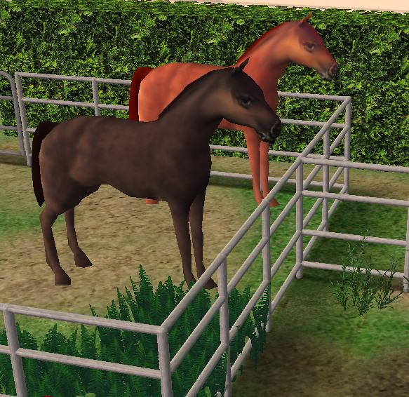 Sims 2 downloads 'farm animals'.