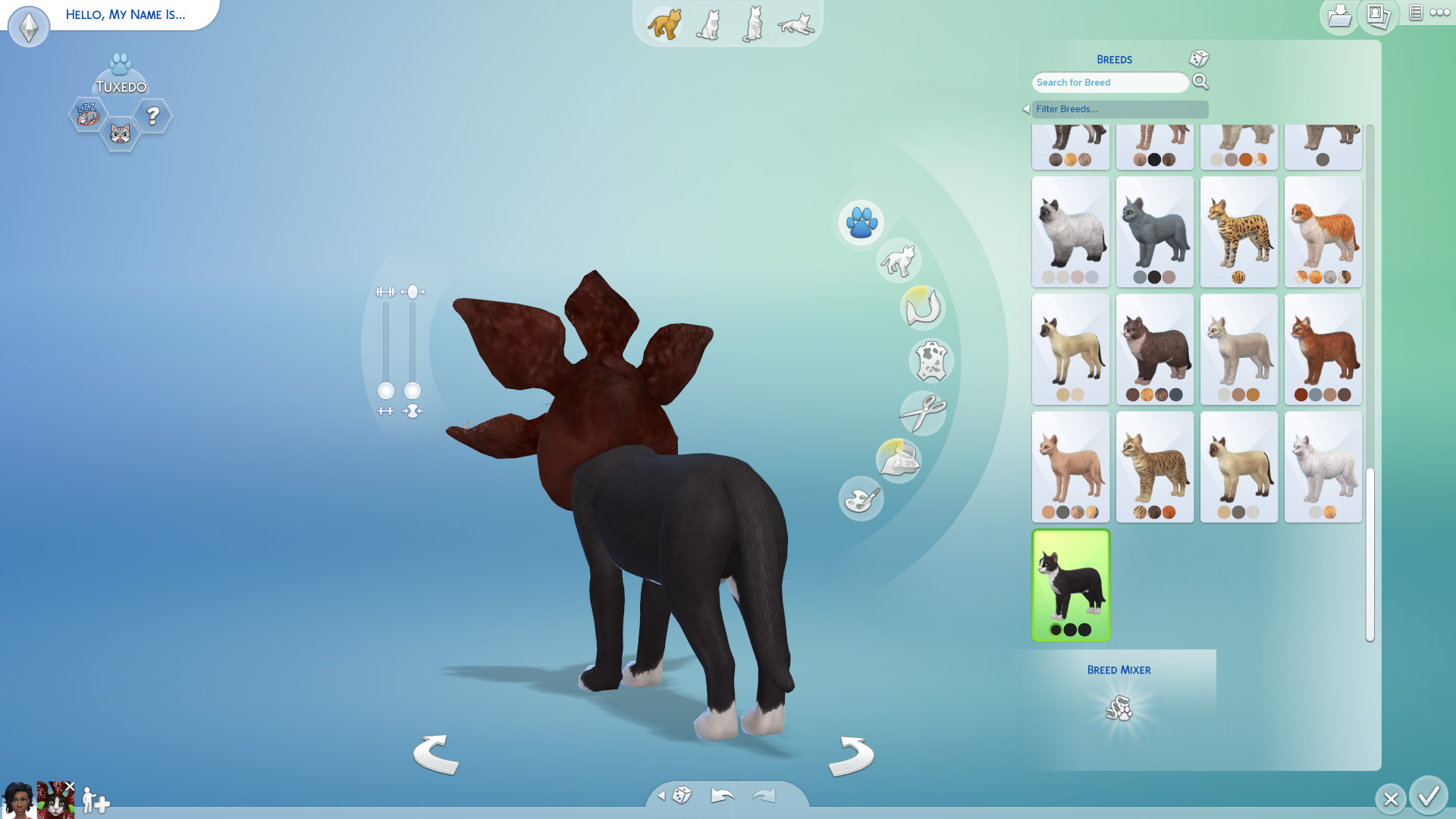 Sims  Cats And Dogs Downloads