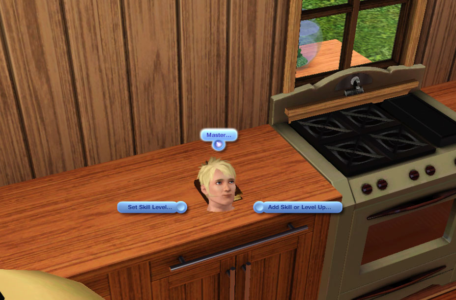 The Sims 3 Book Of Talent