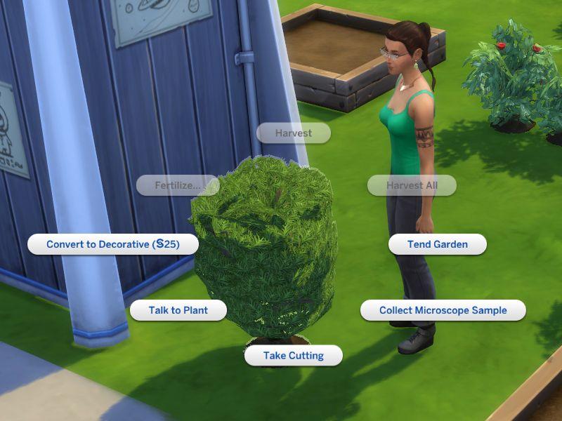 Mod The Sims Bonsai Convert To Decorative Fix