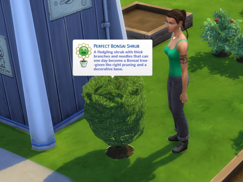 Mod The Sims Bonsai Convert To Decorative Fix