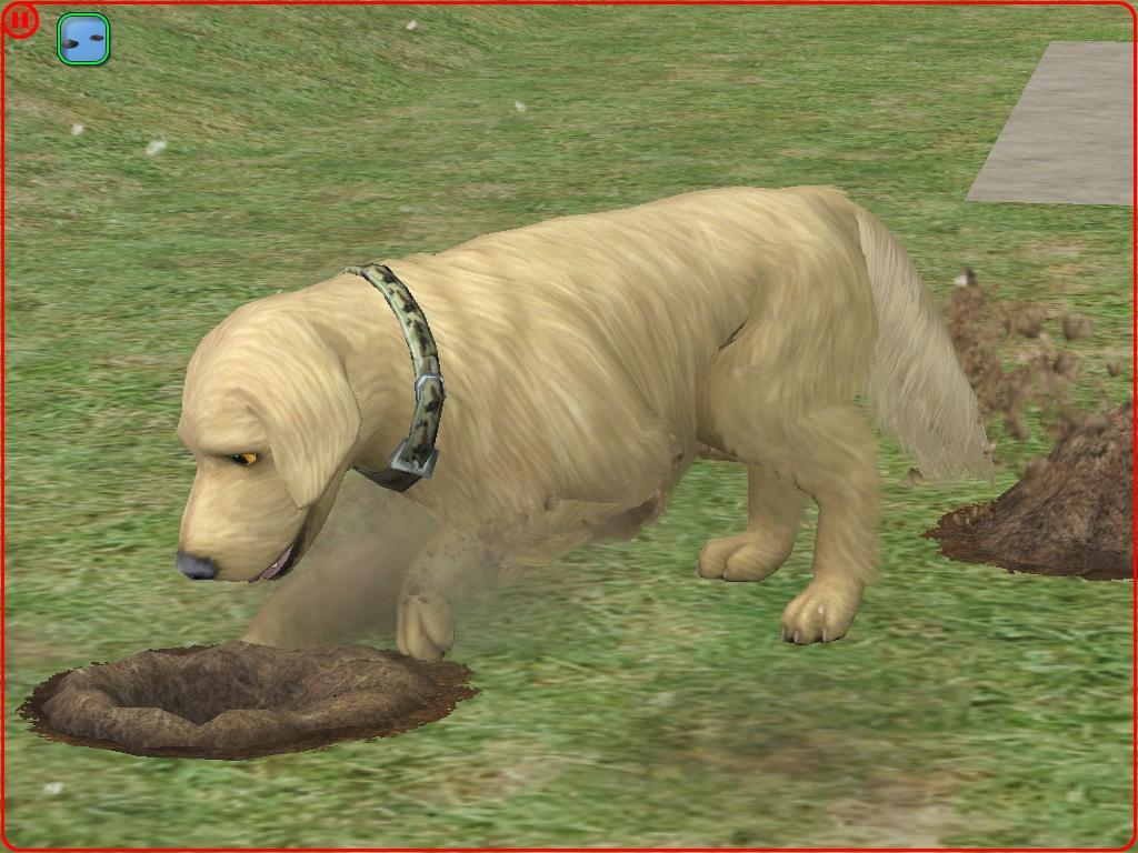 MTS_PetWorld456-1841402-Sims2EP92019-04-2520.59.55.JPG